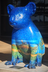 Koala blue (Couldn't Call It Unexpected) Tags: blue koala portmacquarie australia