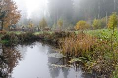 20161030-WOL_7740.jpg (viennalinux) Tags: spaziergang nebel herbst nature tauern fog natur ossiach ossiacher