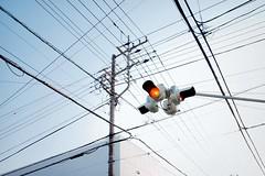 Traffic Light (Gai) Tags:    kamakura kanagawa japan  sky   blue  electric wire pole   traffic light