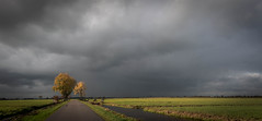 The last sunrays before the storm (zoomleeuwtje) Tags: alblasserwaard holland polder netherlands storm grey sun rays supershot ng flickrtravelaward