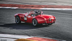 Algarve Classic Festival '16 053 (Bruno Amaro //AMR Photo) Tags: historicracing racecar car accobra