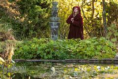 Pre Raphaelite 2016 (71 of 244) (Sue_Hutton) Tags: graceeden michaellauphotography newsteadabbey nottinghamshire preraphaelite costume model outdoors photoshoot