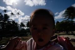 0XT20805.jpg (kz75) Tags: kailua hawaii  us