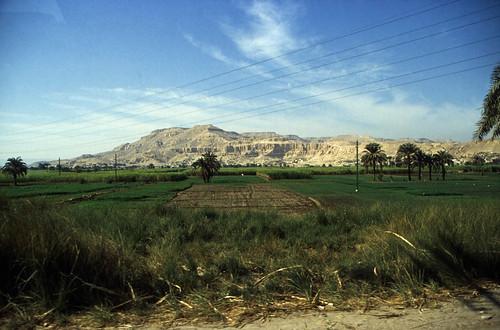 "Ägypten 1999 (500)  Luxor: Busfahrt nach Dendera • <a style=""font-size:0.8em;"" href=""http://www.flickr.com/photos/69570948@N04/30912339972/"" target=""_blank"">View on Flickr</a>"