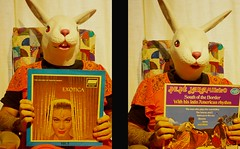 lounge exotica   338/366 (horsesqueezing) Tags: 366the2016edition 3662016 day338366 3dec16 rabbit mask lounge exotica martindenny pepejaramillo vinyl
