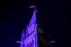 Shine the Light : November 15, 2016 (jpeltzer) Tags: ottawa fall parliament parliamenthill purple shinethelight peacetower night