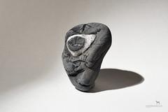 the cyclops (Claudia Knkel) Tags: oregon rock face cyclops sb700 stone