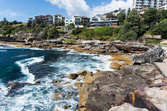 2016.11.26 Sydney (kussmaul9) Tags: sydney bondibeach australia water beach rocks