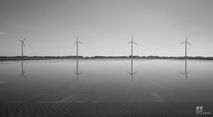 Aligned to greedily harvest (Tony Kanev) Tags: wind windenergy windturbines windmills windfarm reflexion mirror water bw renewableenergy energy alignment row blackwhitephotos blackwhite