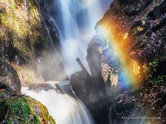 Rainbow at Aira Force (anicoll41) Tags: airaforce rainbow waterfall lakedistrict cumbria nwengland
