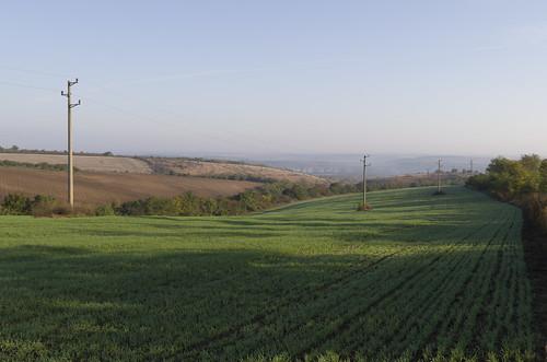 Fields, 12.10.2014.