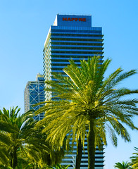 Office and hotel buildings (chrisk8800) Tags: architecture buildings highrise office hotel palmtrees structure pattern lines geometric composition