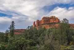 _DSC8857 (jbaker6886) Tags: ahpw arizona cathedralrock oakcreekcanyon sedona colors fall redrocks