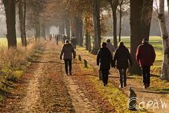 Midwinterhoornwandeling 't Slat (Qdraw.nl foto's) Tags: wandelen midwinterhoornwandeling t slat route people