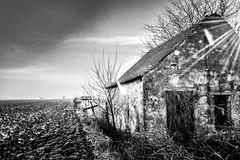 Nobody lives here anymore (Zlatko Vickovic) Tags: streetstreetphoto streetphotography streetphotographybw streetbw streetphotobw blackandwhite monochrome zlatkovickovic zlatkovickovicphotography novisad serbia vojvodina srbija