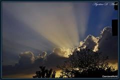 Raggi di sole.. autunnali - Dicembre-2016 (agostinodascoli) Tags: agostinodascoli landscape sicilia sunset sole cianciana nikon nikkor nature paesaggi alberi autunno dicembre raggidisole tramonto travel turismo cielo