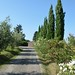 holiday_tuscany