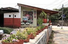 Pokhara Chia Shop
