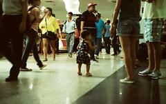 Dear Prudence... (lisandroPeralta) Tags: street bus rio brasil kid san gente pablo niña ups photograph bebe beatles paulo dear sao niño grown prudence airpot chil stationo