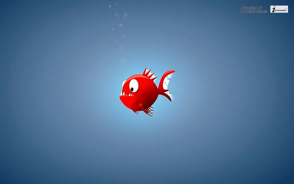 Red Fish Infoway LLC