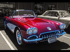 1959 Chevy Corvette (54 Ford Customline) Tags: chevrolet chevy corvette vette musclecar 1959 1959chevroletcorvette 59vette