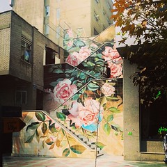 #tehran #flower #paint #stair (pezHman tt) Tags: flower stair paint tehran