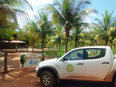 GWD Forestry - Brazil Images (GWD Forestry - Brazil) Tags: ireland brazil white canada green water de denmark coconut forestry timber farm capital greenwood growth management porto coco plantation eucalyptus agriculture armchair mallorca palma greene coconuts investment acacia income sustainable timberland teak invest horticultura coconutwater asset gwp investments assetmanagement gwm diversification agroforestry lowrisk mangium sustainableforestry acaciamangium whiteteak capitalgrowth greeninvestments assetbaccked incomeinvestments greenecoco armchairinvestment baccked