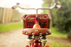 A great ride .  .  . (Borretje76) Tags: bike basket sony 14 sigma gras mm 50 rood enschede fiets mand veren stuur zadel vering a580 borretje76