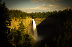 Canada 2013 (saltxxx) Tags: canada nature vancouver grey jasper bc pacific wildlife bears wells columbia vancouverisland alberta banff british rim kanada