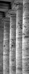 The Bernini colonnade (Tiigra) Tags: 2007 italy rome vatican animal architecture bird church color column rhythm lazio pattern