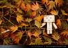 danbo_005 (iskandarbaik) Tags: park uk autumn trees england tree cute home forest toy photography leaf woods bokeh outdoor manga cardboard autumnal yotsuba danbo danbooru revoltech danboard cardbo danboru