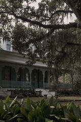 myrtles plantation (praline3001) Tags: old louisiana south ghost historic haunted spanishmoss stfrancisville myrtlesplantation westfelicianaparish
