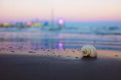 Pleasure Pier, Galveston (ktrap) Tags: ocean sunset sea galveston beach pier sand waves shell bubbles seashell ferriswheel amusementpark