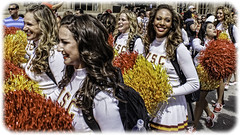 Hot Pom Poms (Steve Mitchell Gallery) Tags: street cheerleaders parade shake usc universityofsoutherncalifornia pompoms trojans songgirls cardinalandgold