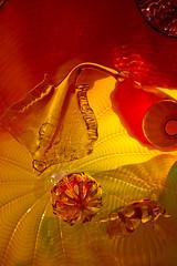 Undersea (Bloui) Tags: chihuly art glass museum angel ray montréal exhibition musée september québec dalechihuly mbam muséedesbeauxartsdemontréal 2013 eos7d plafondspersans