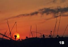 Sopla (1BlancaPhotography) Tags: light sky naturaleza sun luz nature landscape photography nikon colours cielo paintingwithlight crepusculo juego fotografía juegosdeluz collores