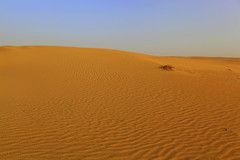Blue and Yellow (Csaba_Bajko) Tags: sand dubai desert uae abudhabi unitedarabemirates horizont sivatag