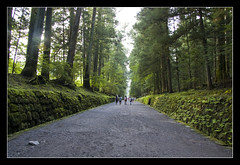 Nikkō Tōshō-gū @Nikko, Japan (brunombo) Tags: park travel trees verde green japan alberi forest way strada pentax path nikko tamron parc viaggio giappone foresta cammino tōshōgū nikkōtōshōgū tamronaf18250mmf3563diiildasphericalifmacro justpentax