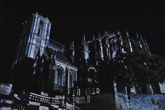 Cathdrale Saint-Julien, Le Mans, Les Chimres 2013 (Thibault Gaulain) Tags: saint julien none mans le cathedrale chimere 2013 d3200