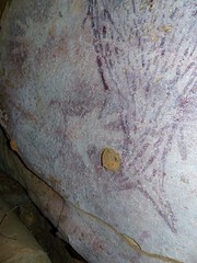 Drysdale River Day 2 - Aboriginal Rock Art - Site 2 (spiderorchid) Tags: art rock aboriginal archaicepoch irregularinfillanimalperiod