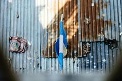 The Legacy of Diego Maradona (Sheikh Shahriar Ahmed) Tags: world cup argentina digital fan football nikon flag diego dhaka magical bangladesh maradona supporters banasree skill fanatical fanbase dhakadivision sheikhshahriarahmed