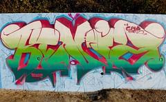Beni'z (Benji_s) Tags: benjis graffiti beniz benis writing letter letters colors colori colorz graff bombing bomb muro wall gelocrew gelo crew 2016 italy handstyle lettering spray spraypaint can