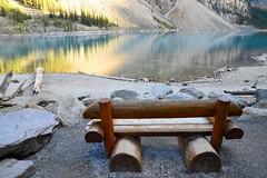 92. Creature Comforts - 116 Pictures in 2016 (Krasivaya Liza) Tags: 116picturesin2016 92 creaturecomforts seat bench banff lakelouise alberta canada