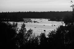 Kvarken Archipelago (@Tuomo) Tags: finland vaasa mustasaari merenkurkku kvarken archipelago sea landscape seascape bw mopnochrome blackandwhite nikon df nikkor 70200mnm4