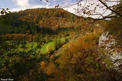 Lumire et Couleur d'Automne au belvdre sauvage du Moulin Sapin - Lizine (francky25) Tags: lumire et couleur dautomne au belvdre sauvage du moulin sapin lizine franchecomt doubs