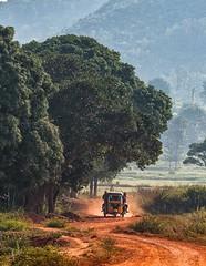 How India Travels-2 (Padmanabhan Rangarajan) Tags: araku villagers tribal rural india vizag valley nature scenery portraiture paddy