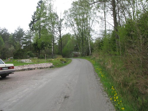 The road between Kareby and Ödsmål 2012(8)