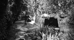 Aylesbury Canal on a Sunny Afternoon (cycle.nut66) Tags: aylesbury arm grand union canal black white monochrome grayscale narrow boat narrowboat water towpath trees ricoh mirai film fuji 400 superia bridge camera analogue scan