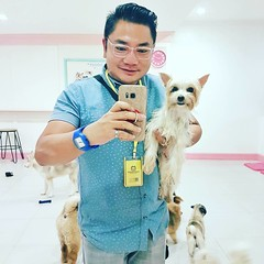 Okey... I'm taking you home to be poppee's playmate!                                      #yorkshire #LoveyDoggy #DogCafe #Cebu #Cafe #PetFriendly #InstaPet #instadog #dogofinstagram #InstaGood #InstaDaily #POTD #TheDentistIsOut