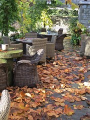5803 Autumn Patio (Andy - Busyyyyyyyyy) Tags: 20161110 autumncolour bhday13 broughholiday ccc chairs harome leaves lll ooo orange patio pergola ppp seats sss tables thepheasantinn ttt yorkshire